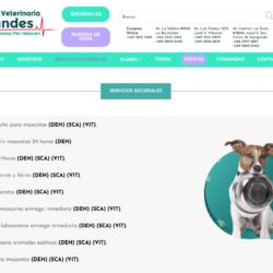servicio de Peluquería canina en la RM